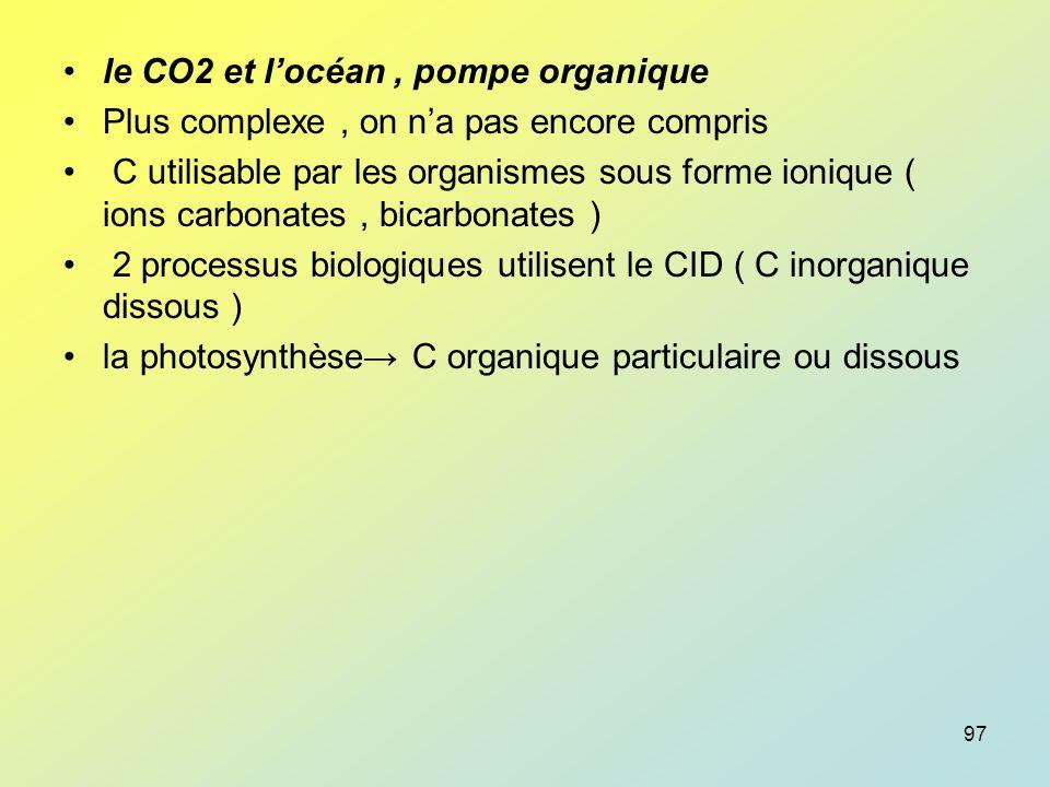 le CO2 et l'océan , pompe organique