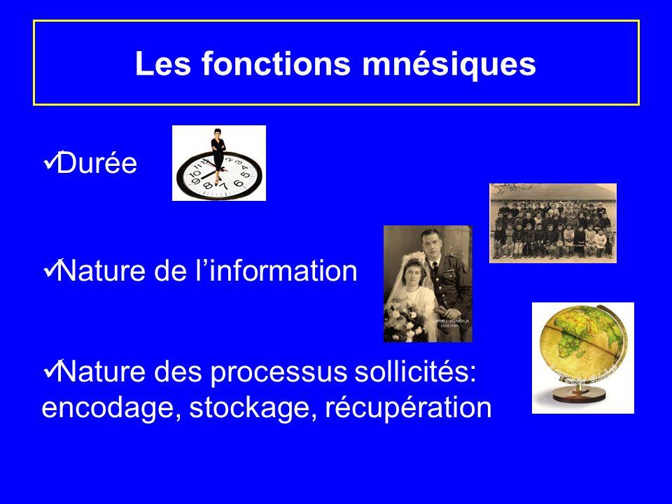 Les fonctions mnésiques