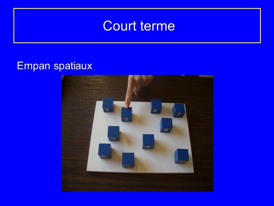 Court terme Empan spatiaux