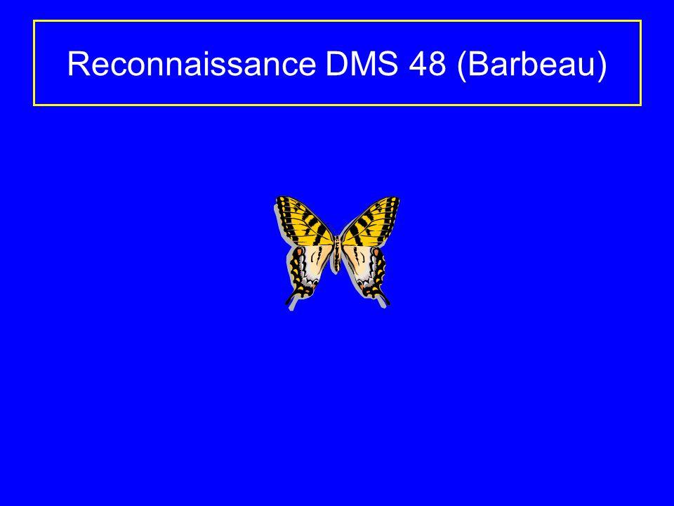 Reconnaissance DMS 48 (Barbeau)