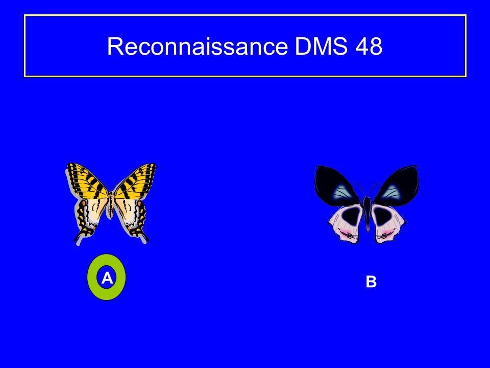 Reconnaissance DMS 48 Contient des clips arts Microsoft (4) et Softkey (4) A B