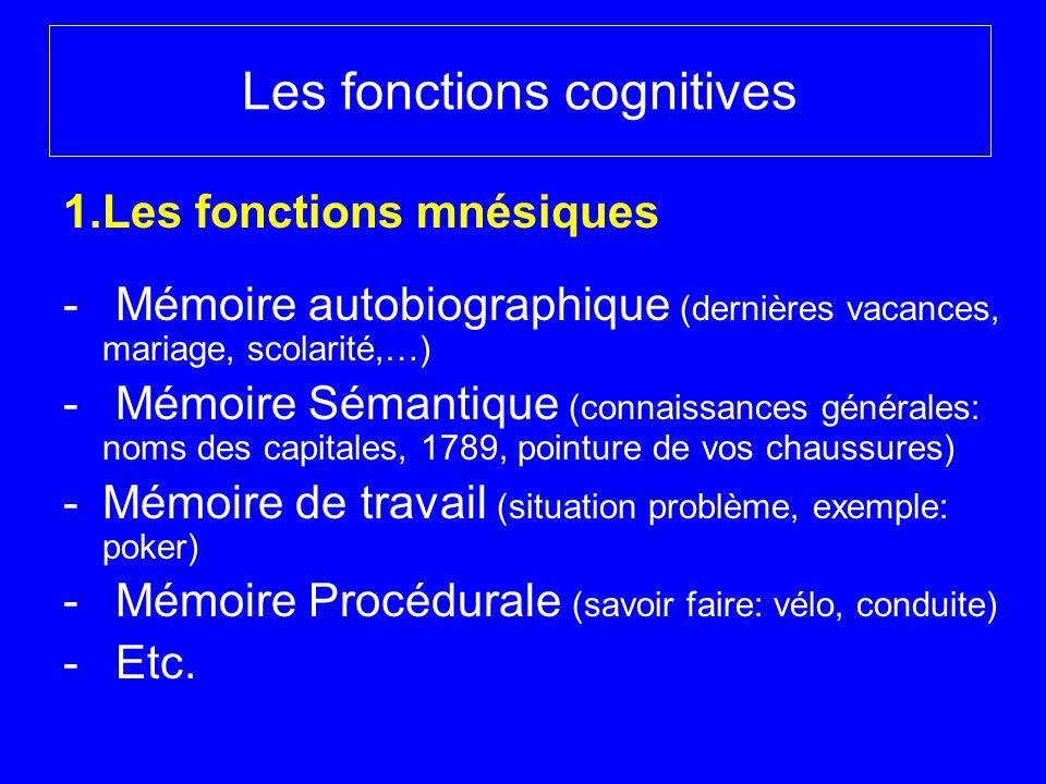 Les fonctions cognitives