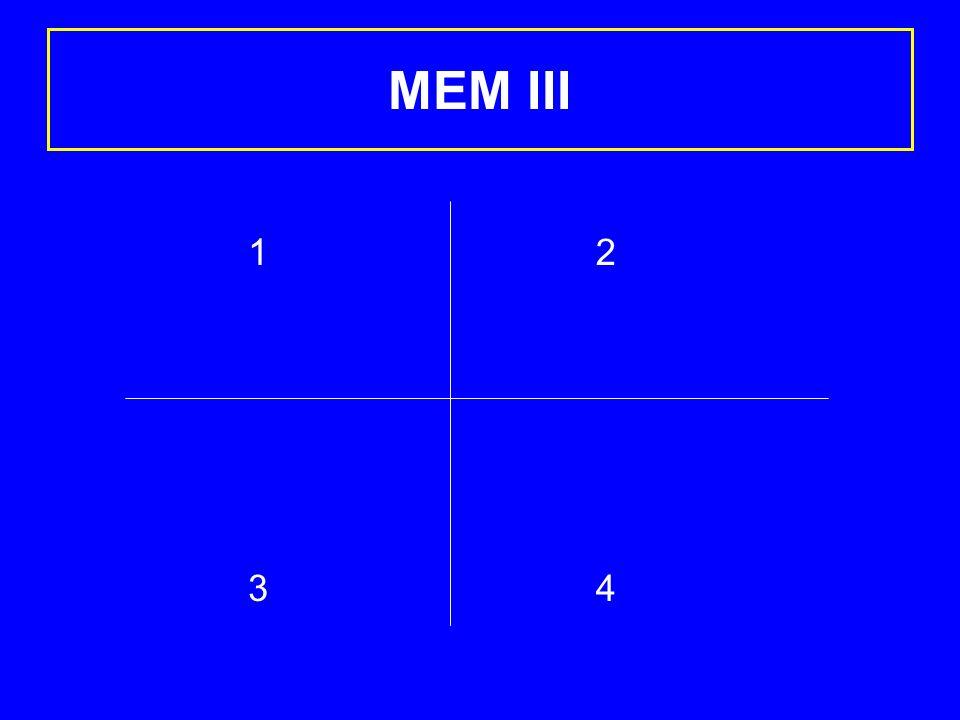 MEM III 1 3 2 4