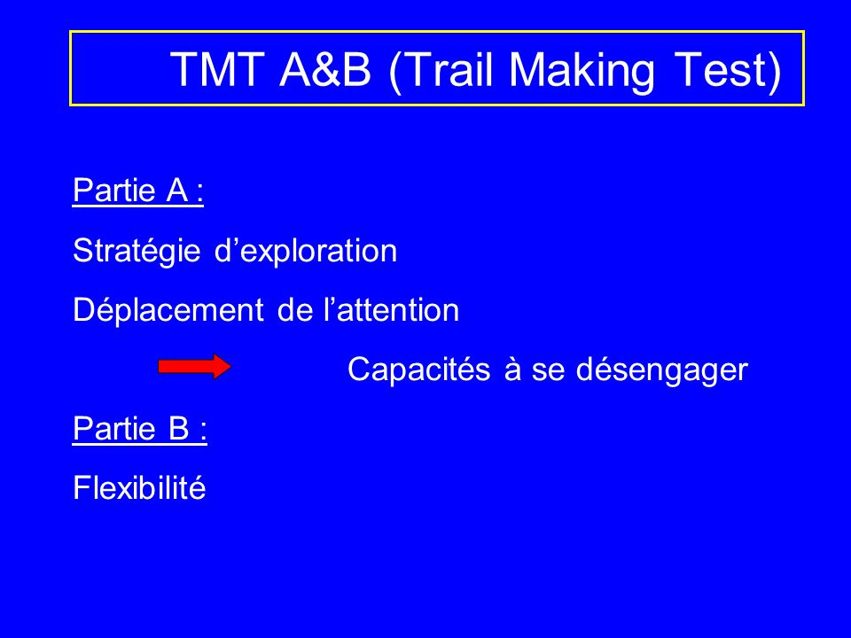 TMT A&B (Trail Making Test)