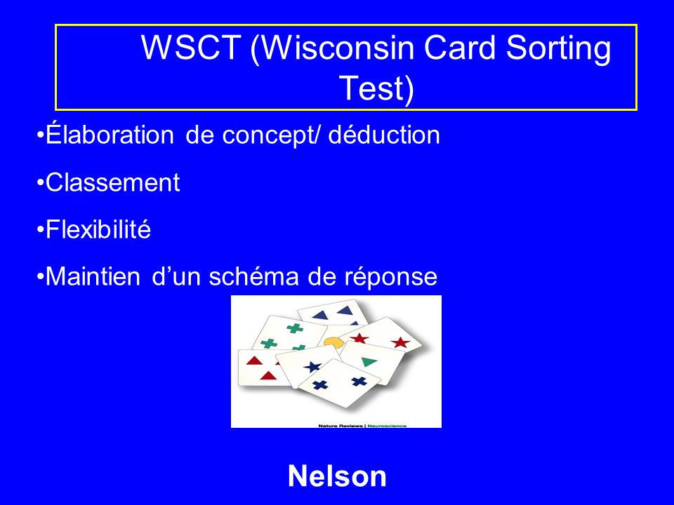 WSCT (Wisconsin Card Sorting Test)