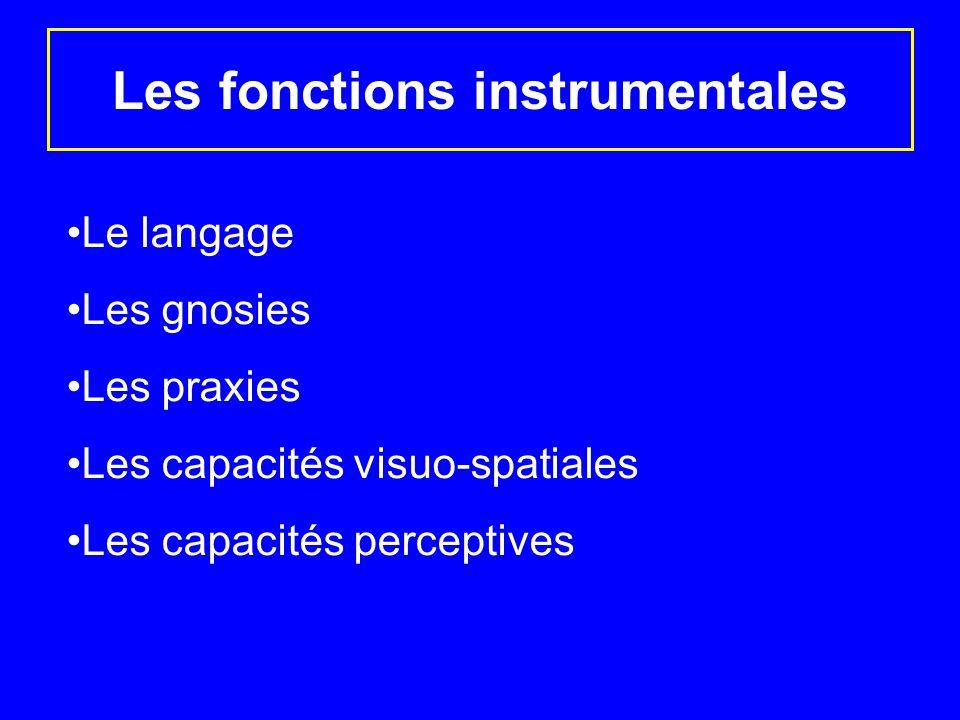 Les fonctions instrumentales