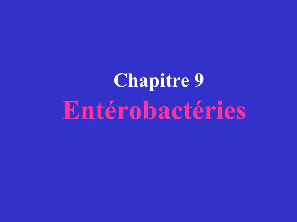 Chapitre 9 Entérobactéries