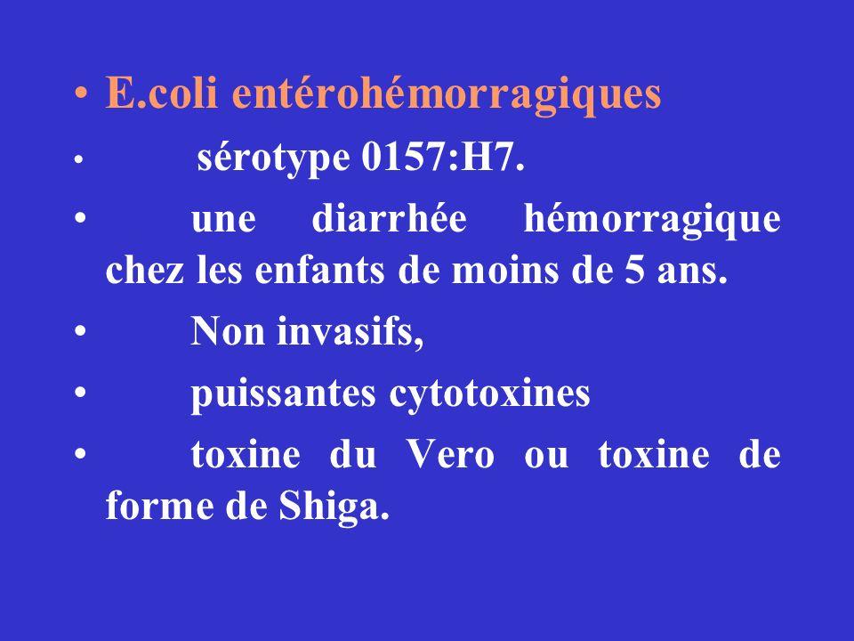 E.coli entérohémorragiques