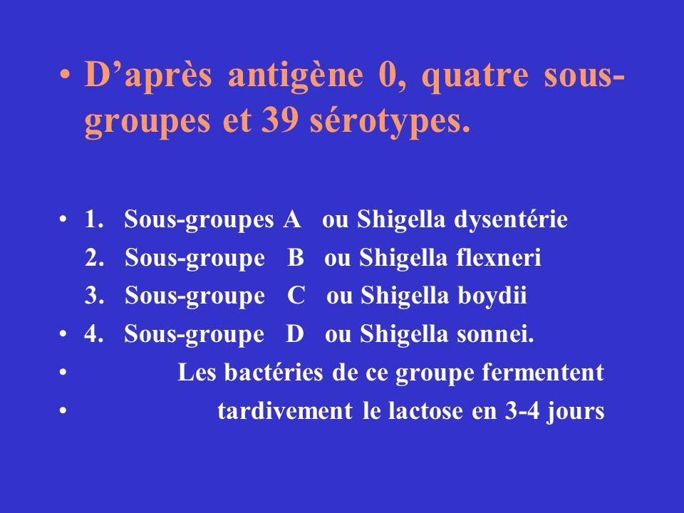 D'après antigène 0, quatre sous-groupes et 39 sérotypes.