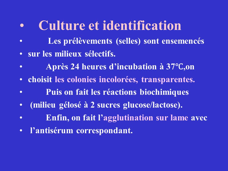 Culture et identification