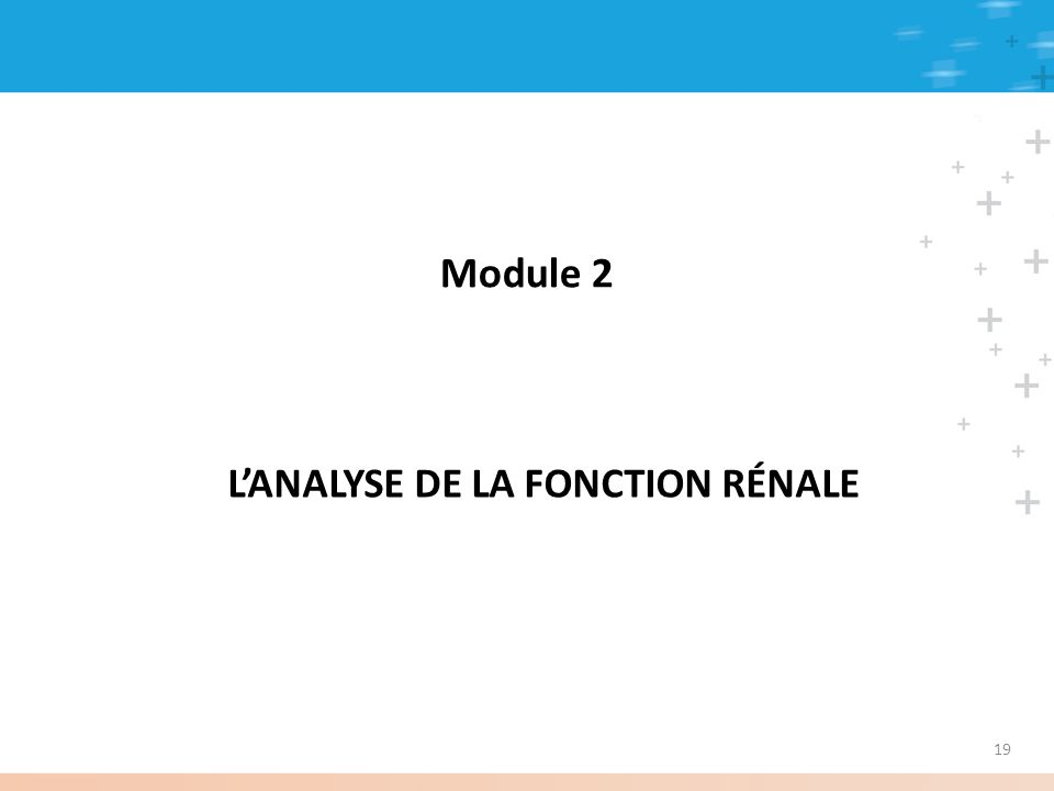 L'ANALYSE DE LA FONCTION RÉNALE