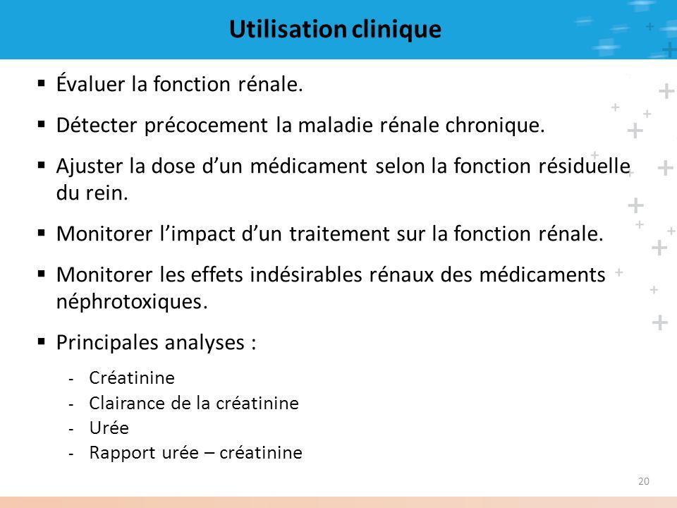 Utilisation clinique Évaluer la fonction rénale.