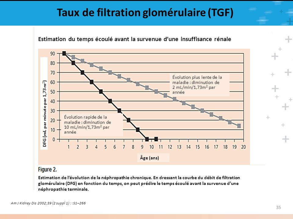 Taux de filtration glomérulaire (TGF)