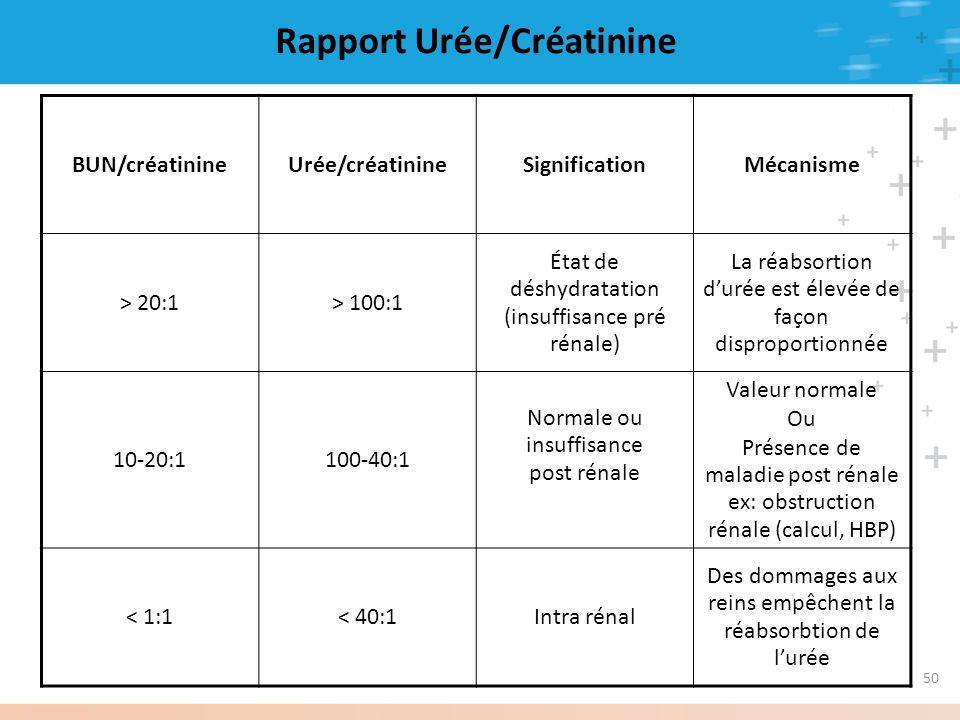 Rapport Urée/Créatinine