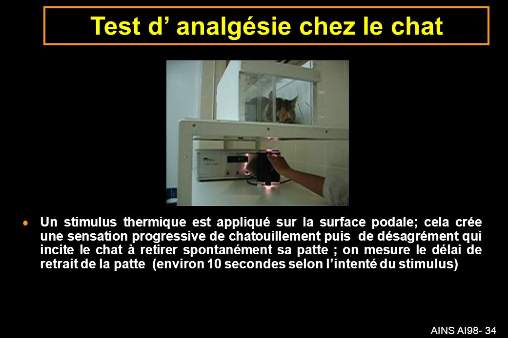 Test d' analgésie chez le chat