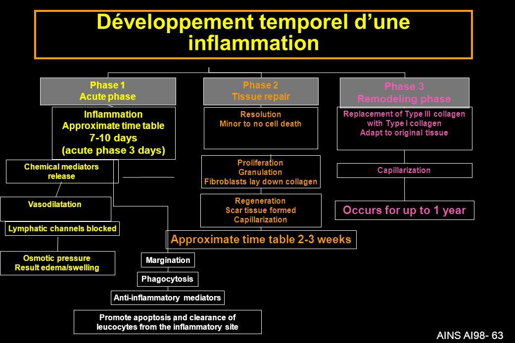 Développement temporel d'une inflammation