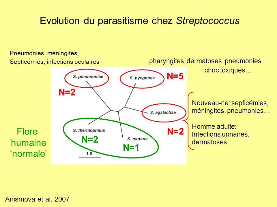 Evolution du parasitisme chez Streptococcus