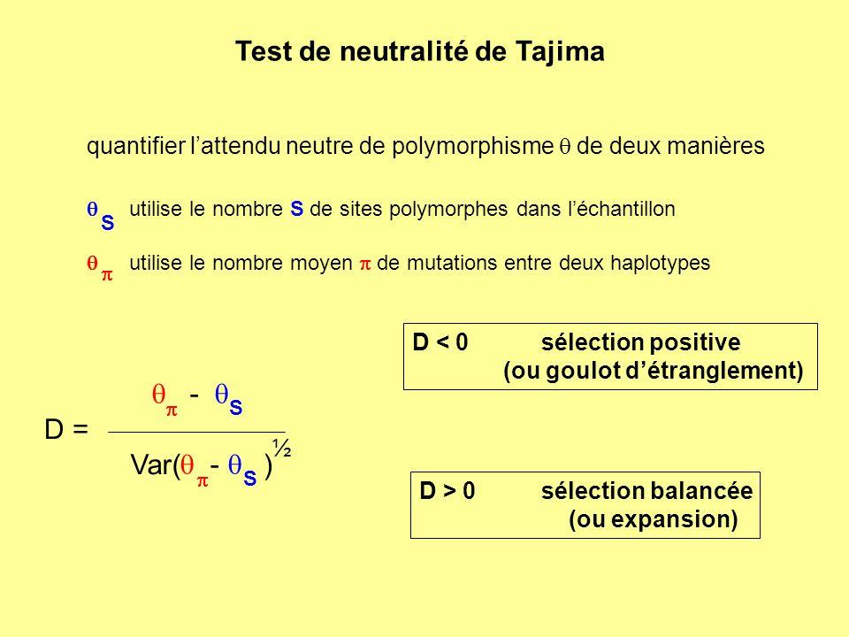Test de neutralité de Tajima