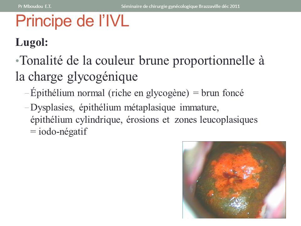 Séminaire de chirurgie gynécologique Brazzaville déc 2011