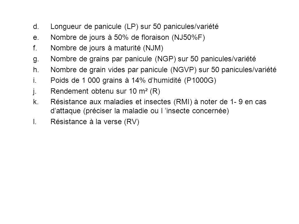 Longueur de panicule (LP) sur 50 panicules/variété