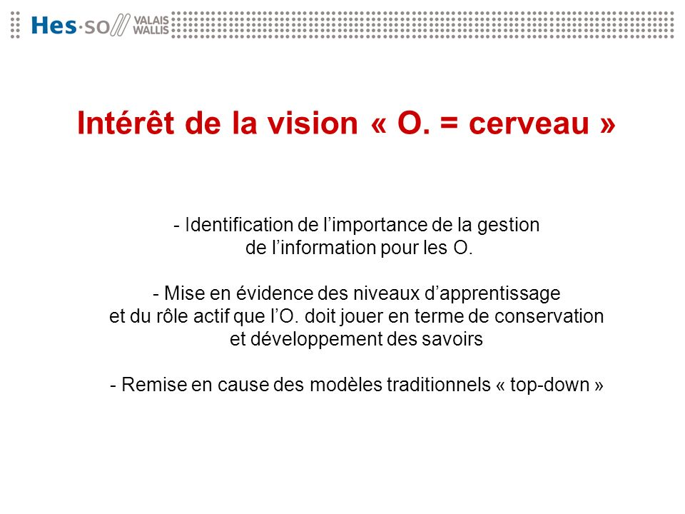 Intérêt de la vision « O. = cerveau »