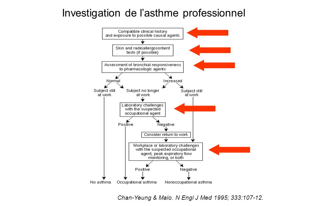 Investigation de l'asthme professionnel