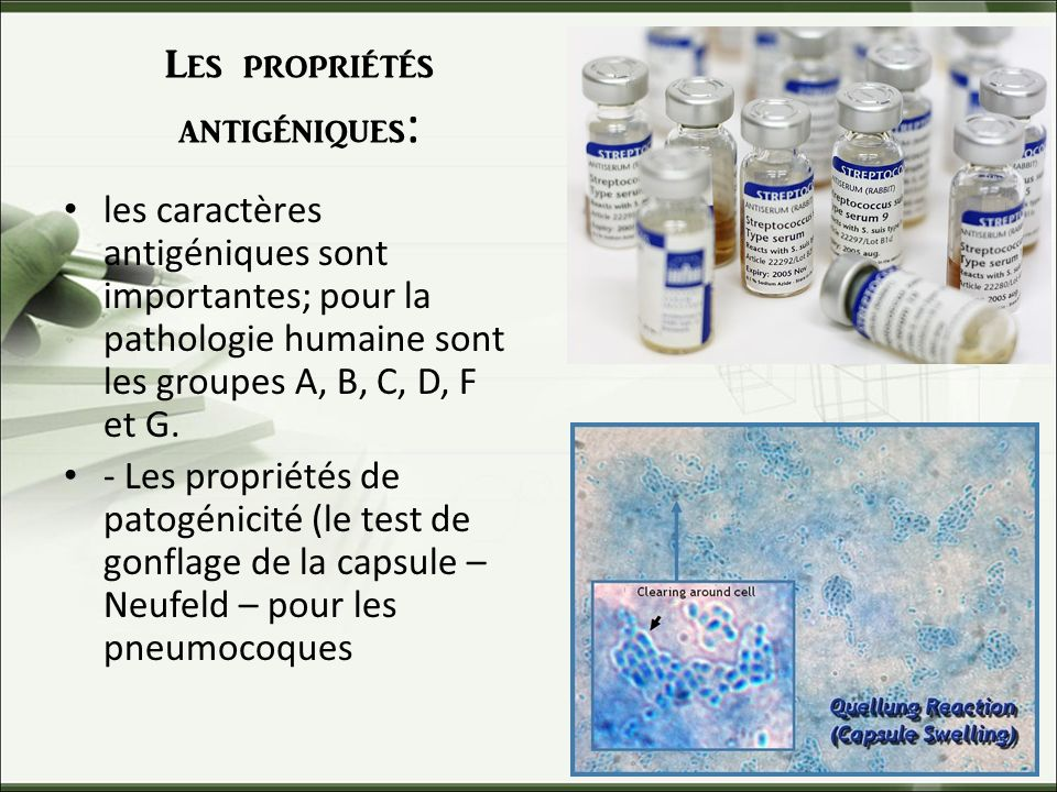 Les propriétés antigéniques: