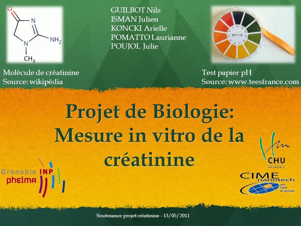 Projet de Biologie: Mesure in vitro de la créatinine