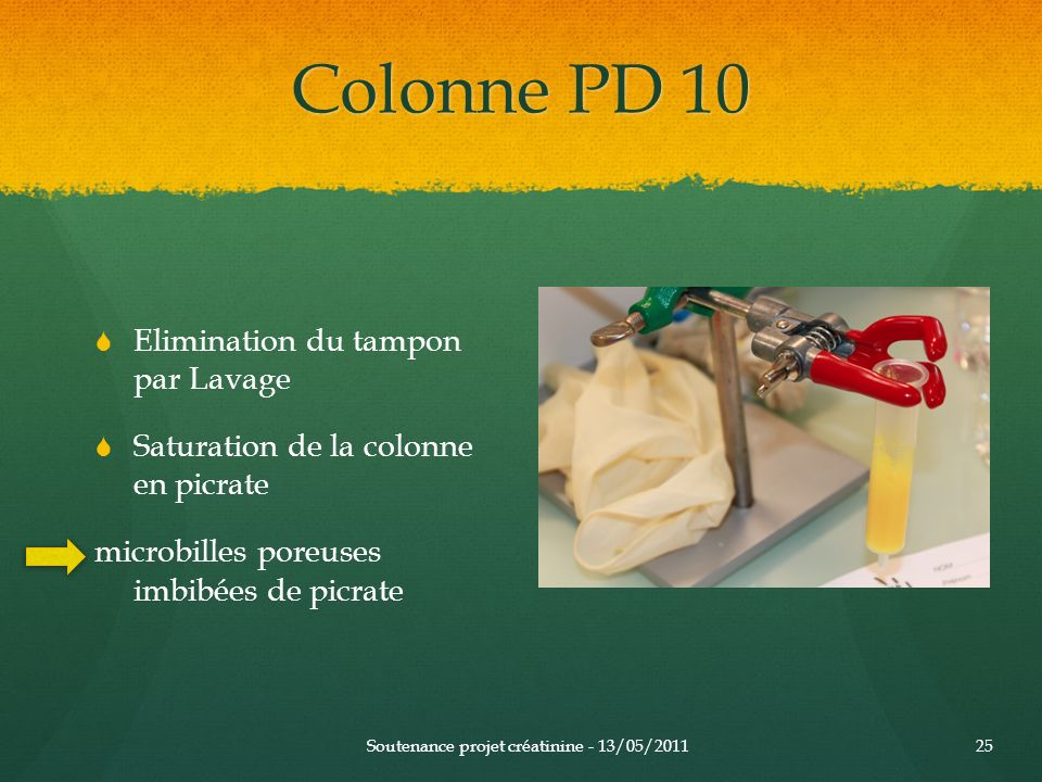Colonne PD 10 Elimination du tampon par Lavage