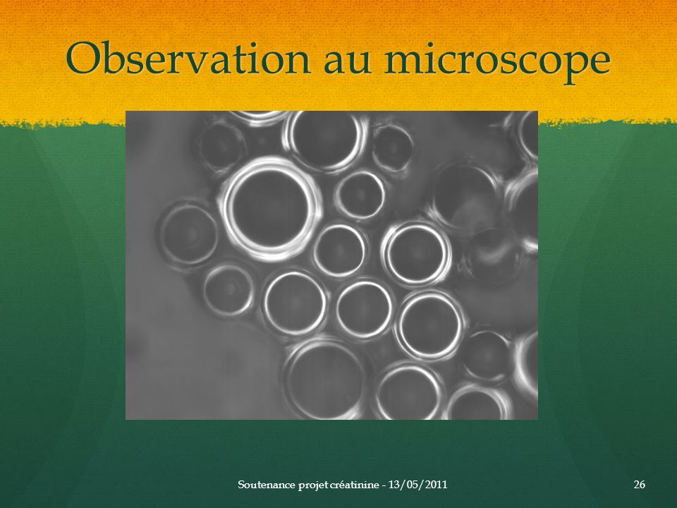 Observation au microscope