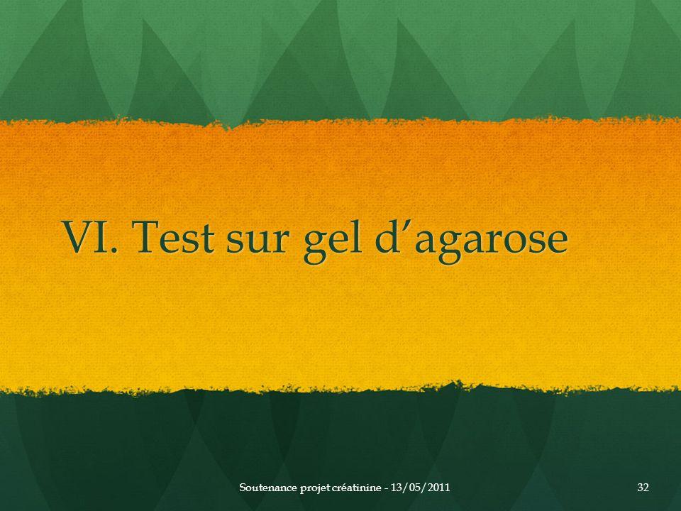 VI. Test sur gel d'agarose