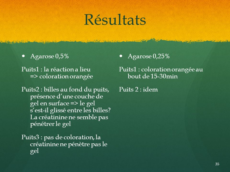 Résultats Agarose 0,5% Puits1 : la réaction a lieu => coloration orangée.