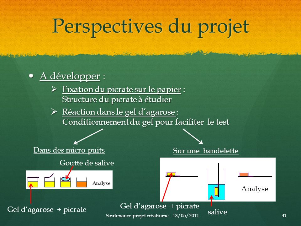Perspectives du projet