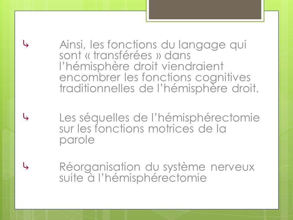 Ainsi, les fonctions du langage qui sont « transférées » dans l'hémisphère droit viendraient encombrer les fonctions cognitives traditionnelles de l'hémisphère droit.