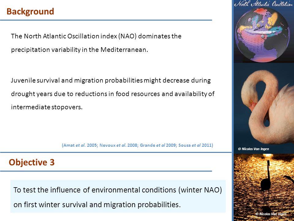 BackgroundThe North Atlantic Oscillation index (NAO) dominates the precipitation variability in the Mediterranean.