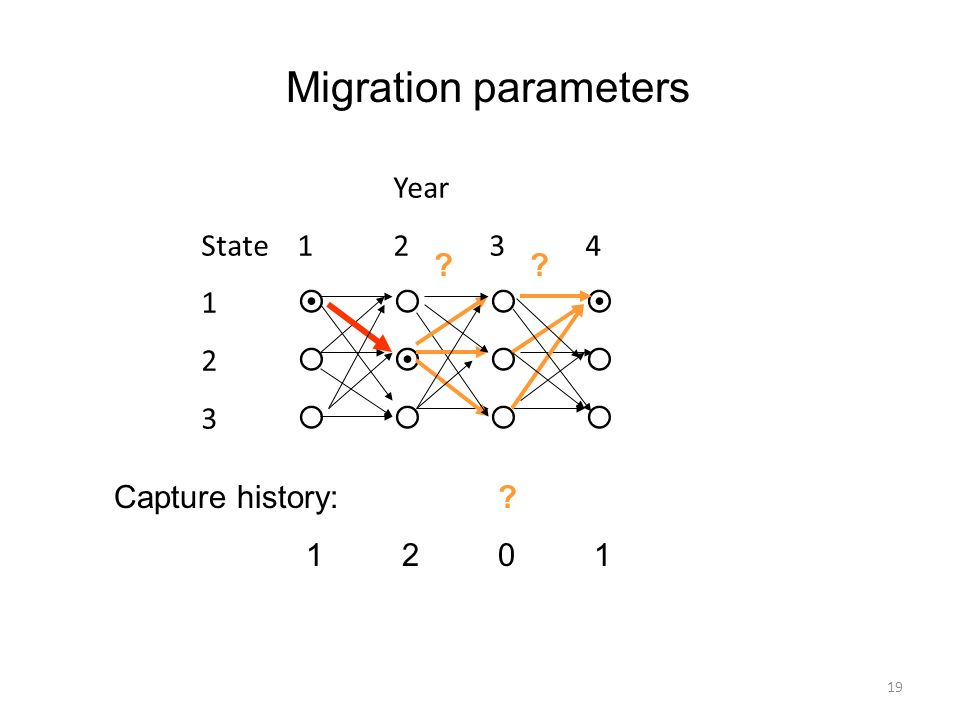 Migration parameters Year State 1 2 3 4 1     2     3    