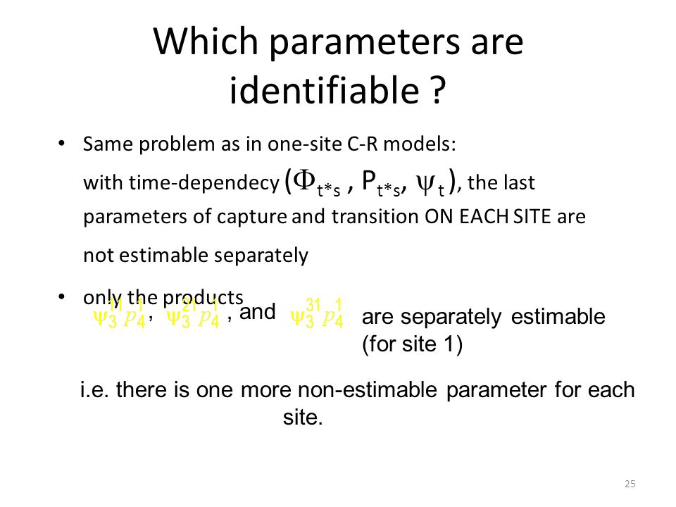 Which parameters are identifiable