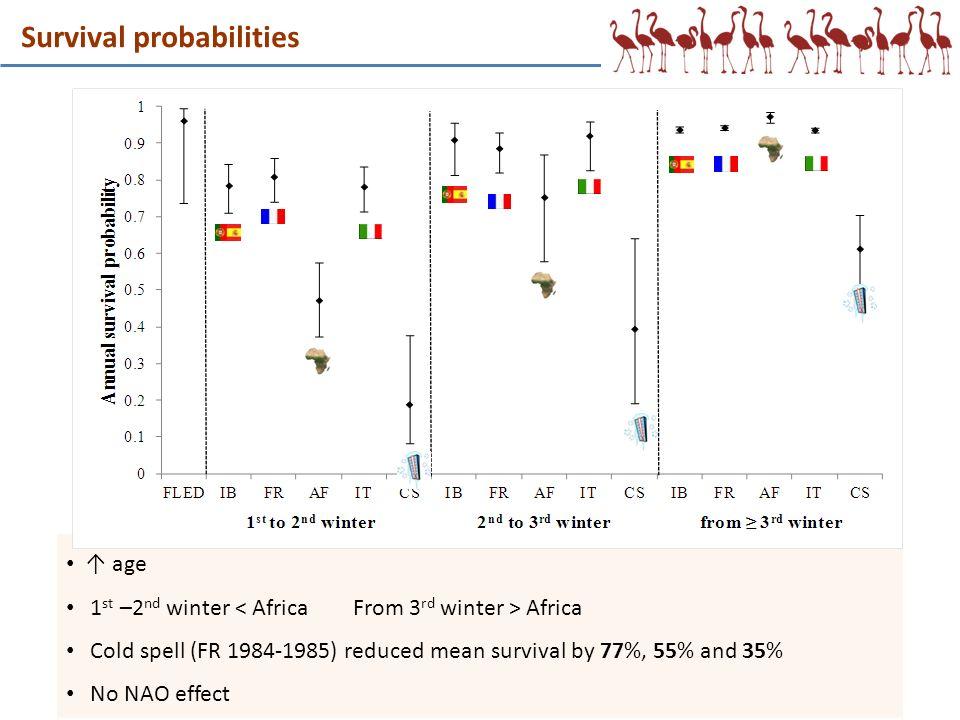 Survival probabilities