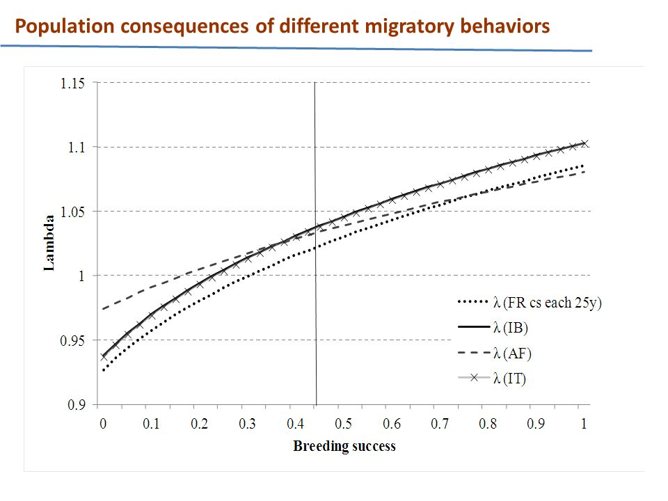Population consequences of different migratory behaviors