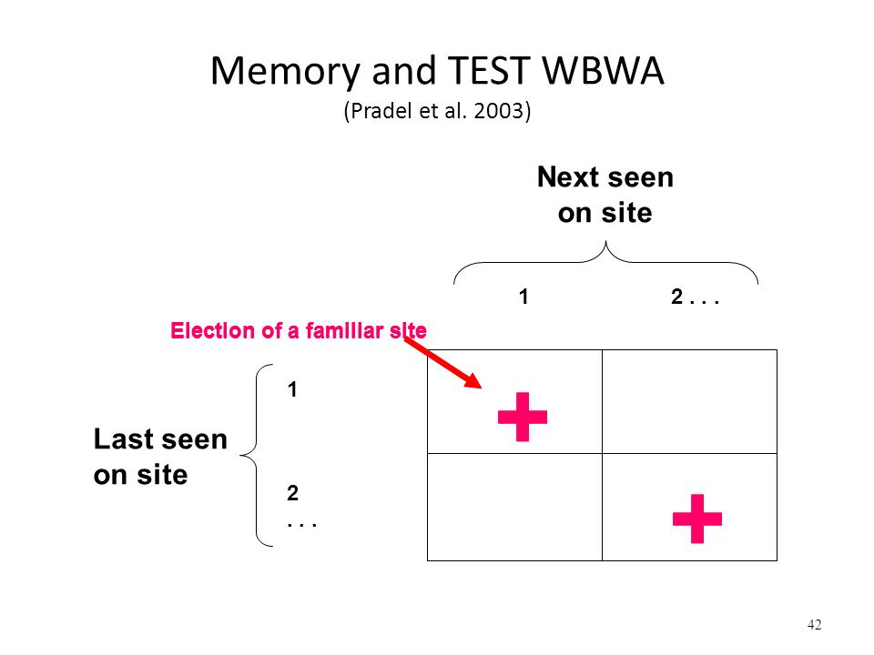 Memory and TEST WBWA (Pradel et al. 2003)