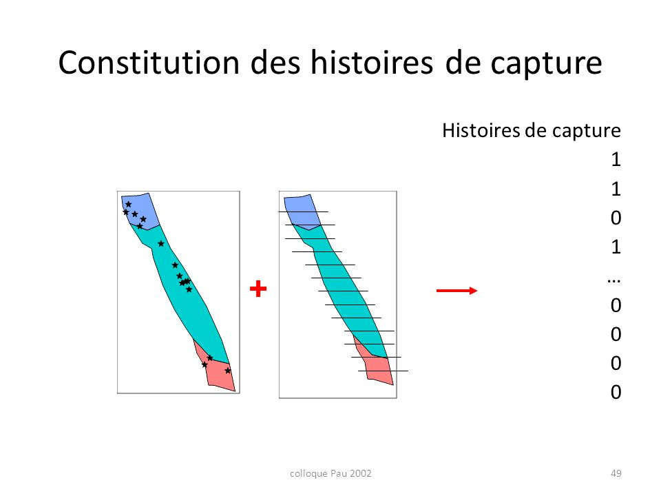 Constitution des histoires de capture