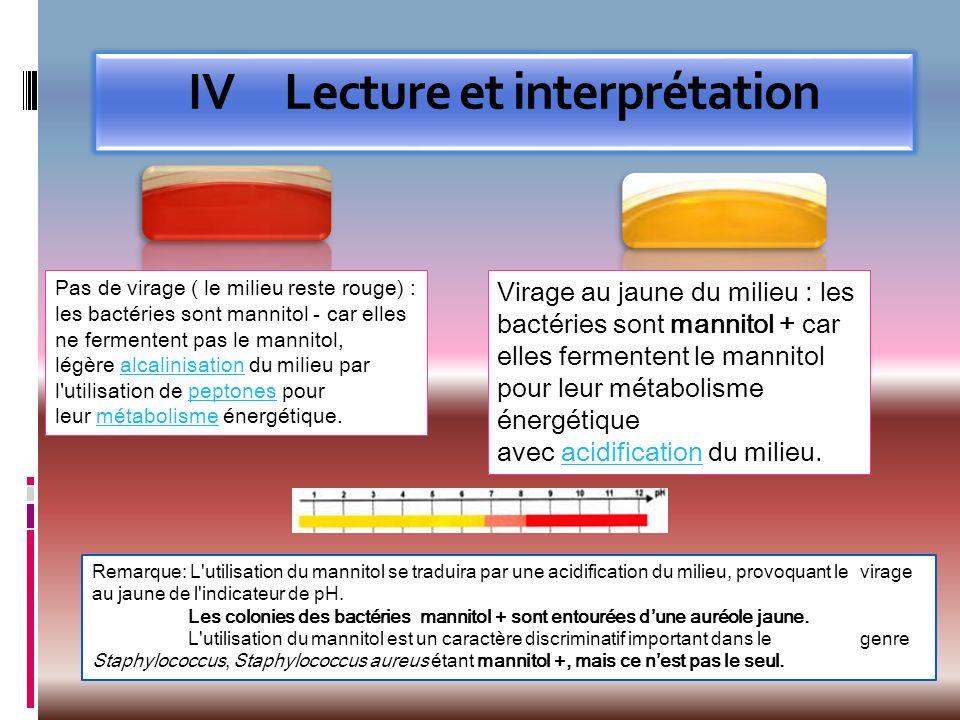 IV Lecture et interprétation