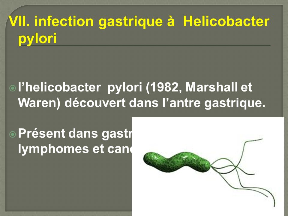 VII. infection gastrique à Helicobacter pylori