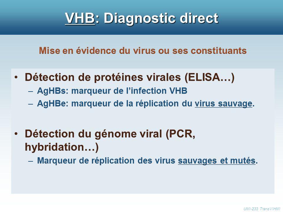 VHB: Diagnostic direct