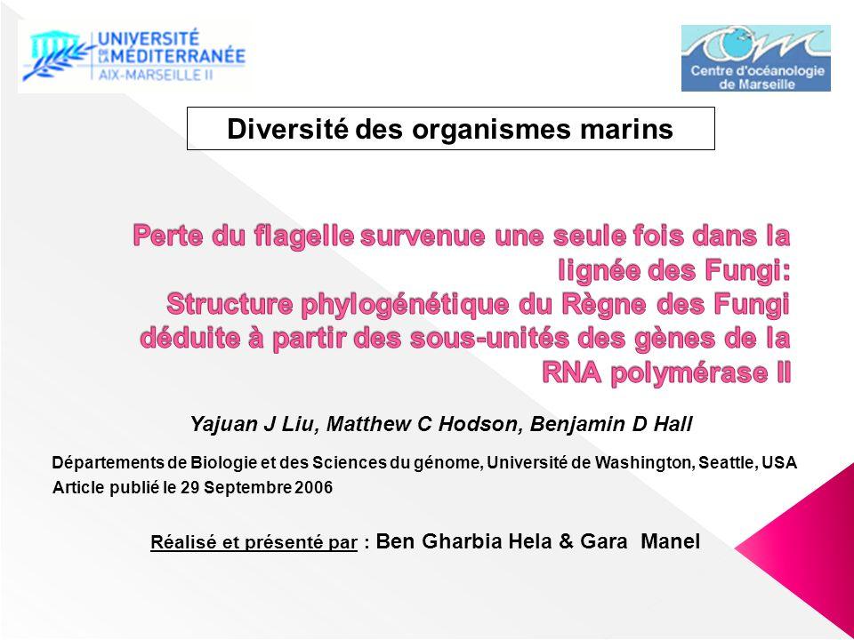 Diversité des organismes marins