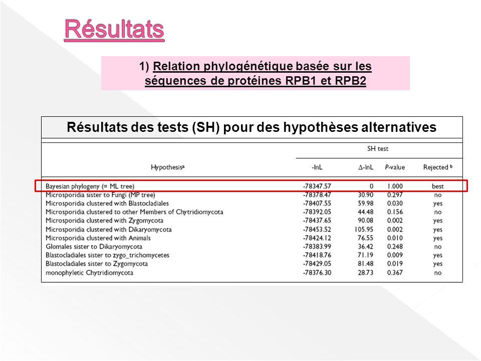 Résultats des tests (SH) pour des hypothèses alternatives