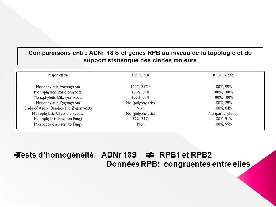 Tests d'homogénéité: ADNr 18S RPB1 et RPB2