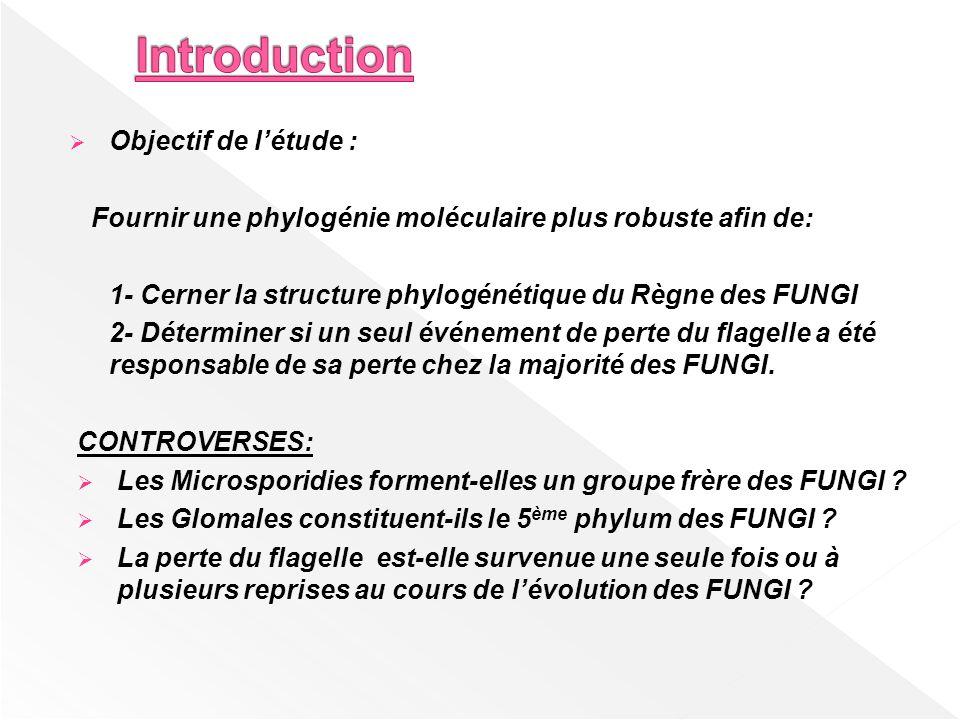 Introduction Objectif de l'étude :