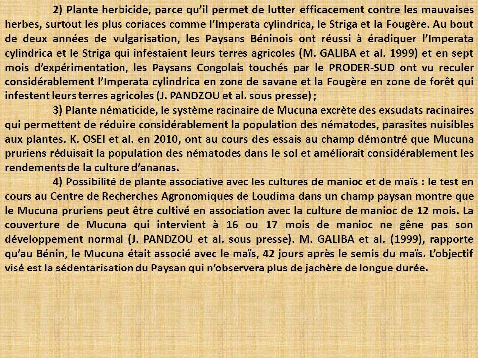 2) Plante herbicide, parce qu'il permet de lutter efficacement contre les mauvaises herbes, surtout les plus coriaces comme l'Imperata cylindrica, le Striga et la Fougère. Au bout de deux années de vulgarisation, les Paysans Béninois ont réussi à éradiquer l'Imperata cylindrica et le Striga qui infestaient leurs terres agricoles (M. GALIBA et al. 1999) et en sept mois d'expérimentation, les Paysans Congolais touchés par le PRODER-SUD ont vu reculer considérablement l'Imperata cylindrica en zone de savane et la Fougère en zone de forêt qui infestent leurs terres agricoles (J. PANDZOU et al. sous presse) ;