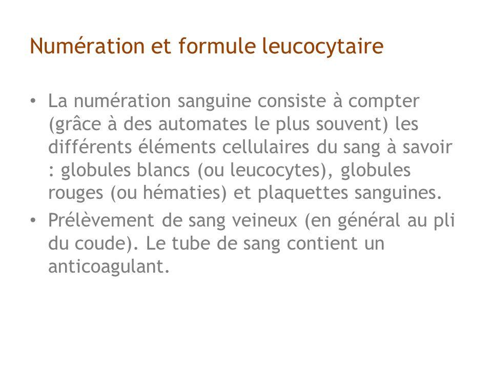Numération et formule leucocytaire
